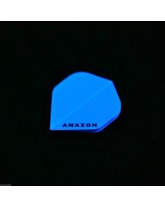 Amazon Standard Flights